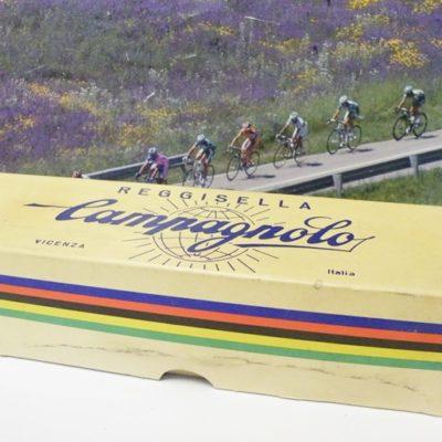 Campagnolo record seat pin box