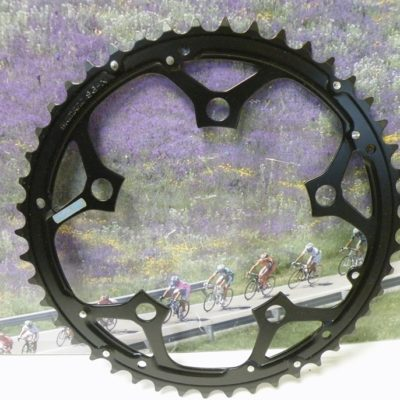 Shimano SG-X  chainring BCD110  46